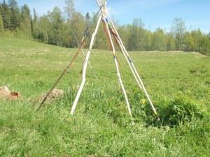 Den ikke-samiske delen