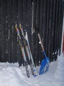 Ski og spade